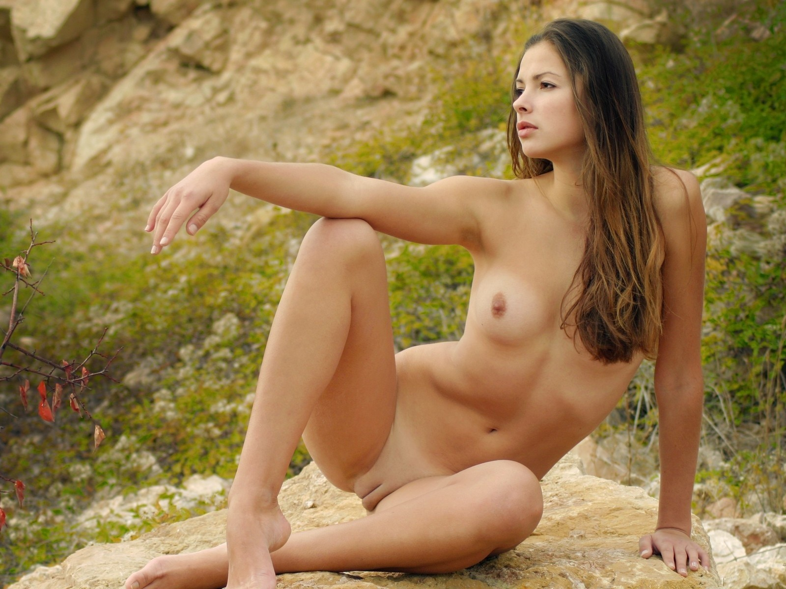 yaponskie-eroticheskie-hudozhniki