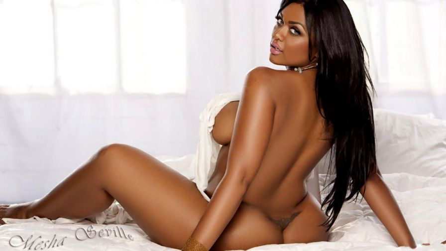 Shakara Ledard Celebrity Posing Hot Babe Ebony Nude Bikini X-art 1