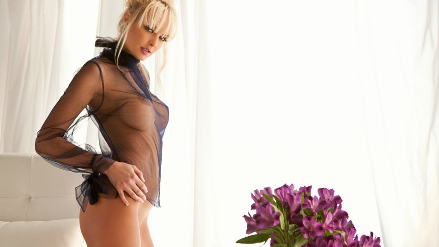 Shera Bechard Lustro Collectionofbestporn 1