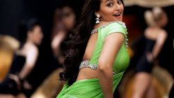 SONAKSHI SINHA Indian Actress 95