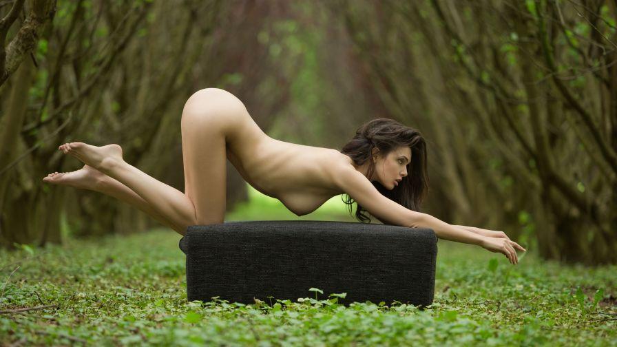 Тони митчелл фетиш шедевры эротической фотографии